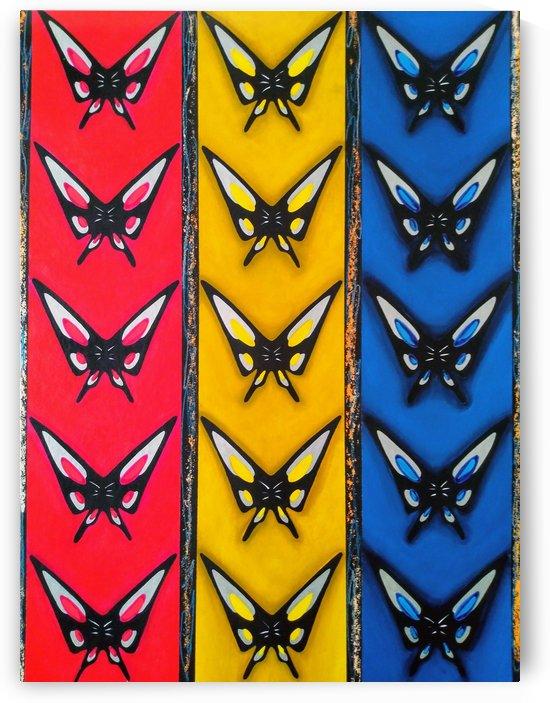 Butterflies by Hirotaka Suzuki