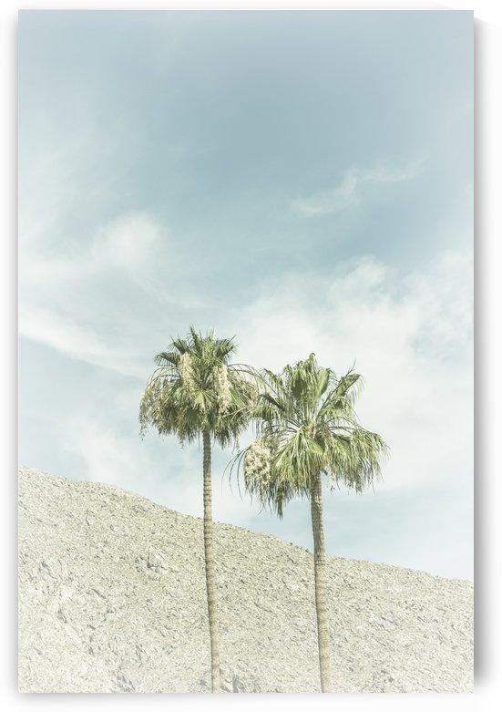 Palm Trees in the desert | Vintage by Melanie Viola