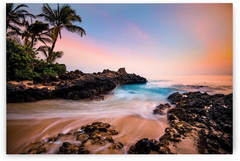 Hawaiian Paradise by Lucas Moore
