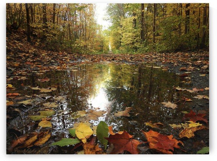 Autumn  by Parisella Studio