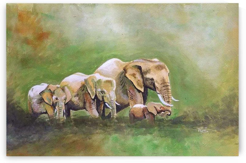 Elephants by Ravi Gubbala