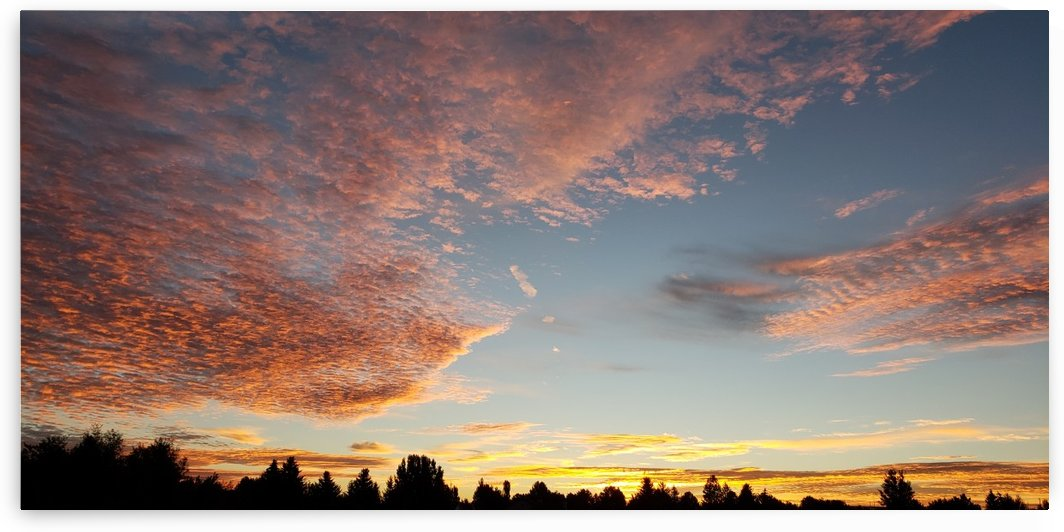 Crimson Sunrise  by Jeremy J Newman