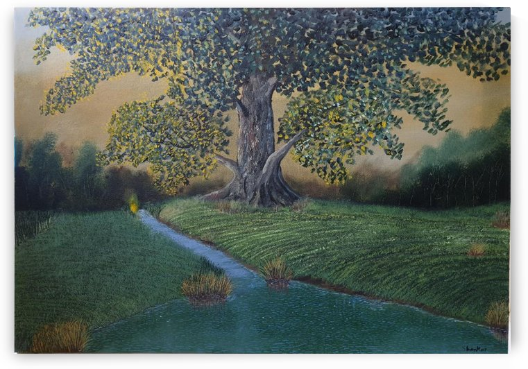 The sentinel tree by Shankar Kashyap