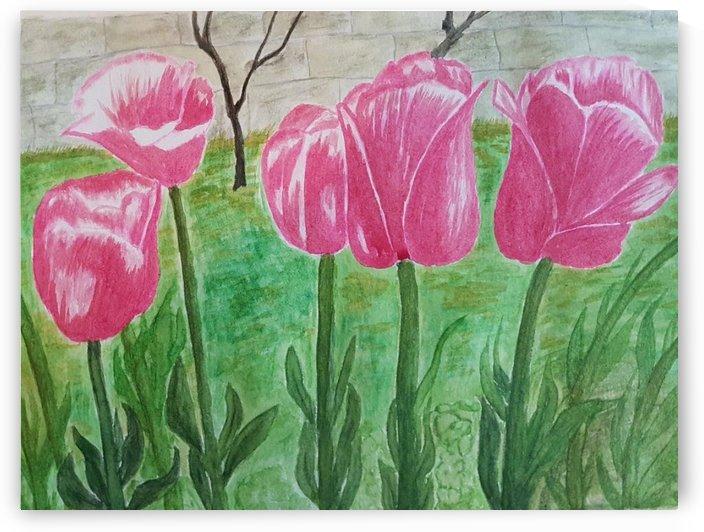 Red Tulips by Shankar Kashyap