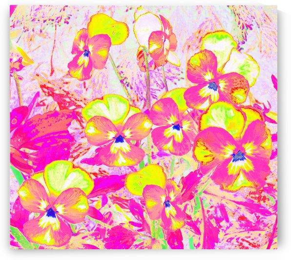 Violets Flowers Garden by CvetiArt