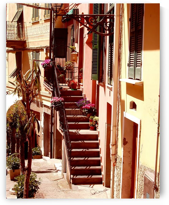 Cinque Terre Stairway by Shadow and Form