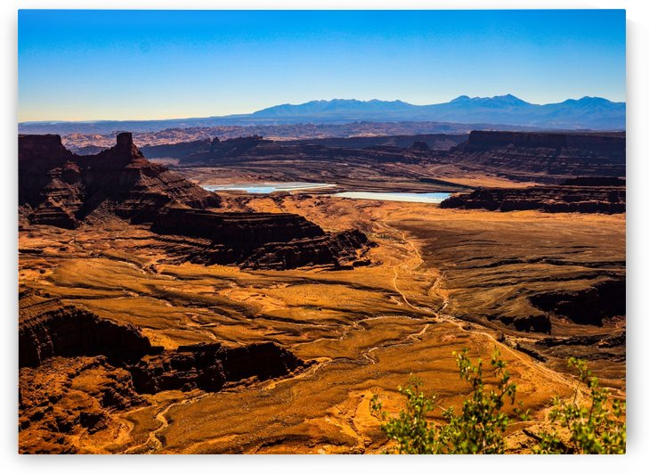 Scenic View of Canyonlands by Michael Stephen Dikovitsky