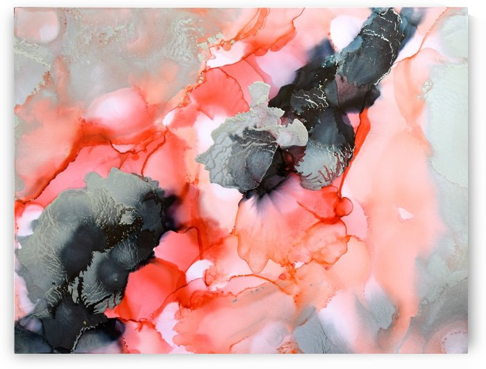 Coral Beauty by Amber Lamoreaux
