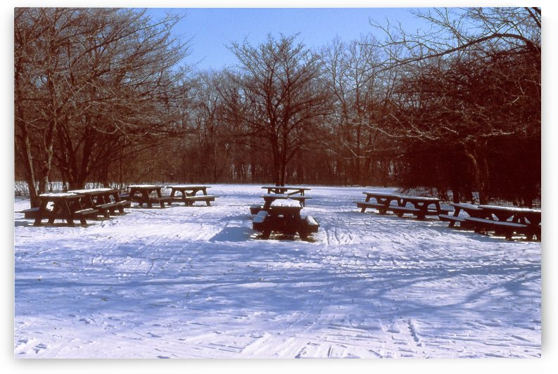 Snowy Picnic Tables Waiting For Spring by ImagesAsArt By John Louis Benzin