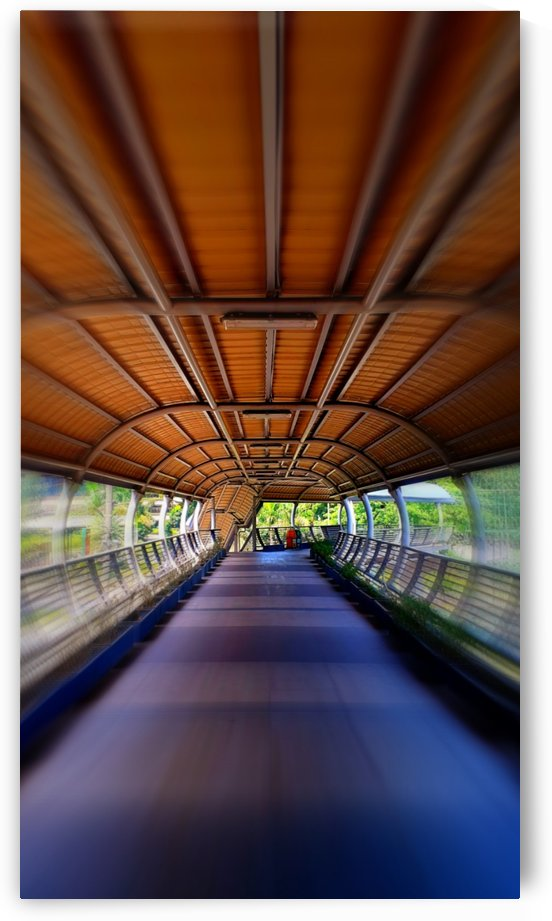 Centered view overpass by jgarcia