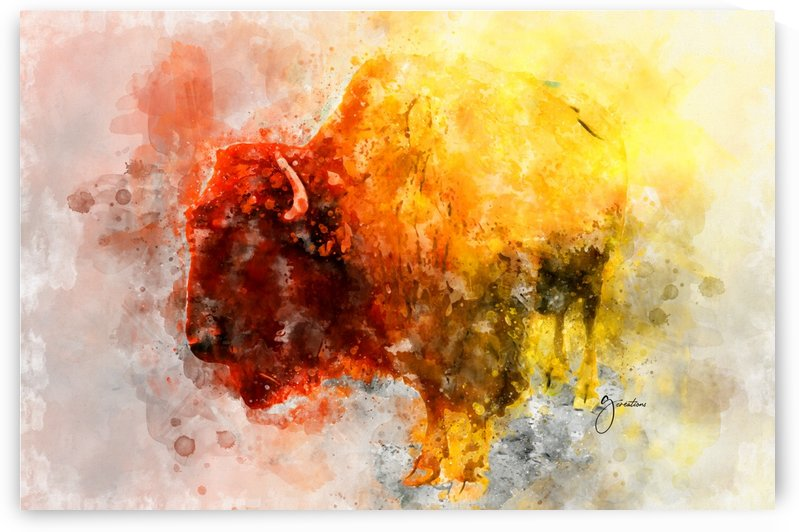 Bison en couleurs by G Creations