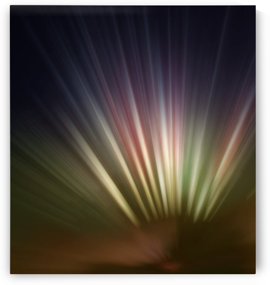 Spotlights by Jenn Rosner