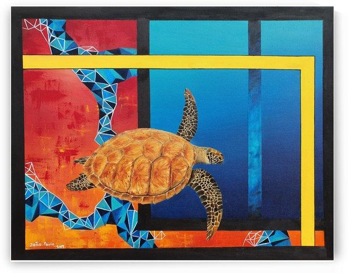 Sea turtle by jpa.magalhaes