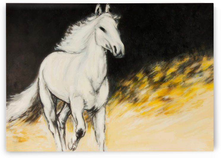 Lara Asbah   Horse by Aasbah