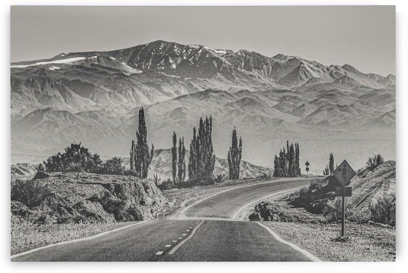 Deserted Landscape Highway San Juan Province Argentina by Daniel Ferreia Leites Ciccarino