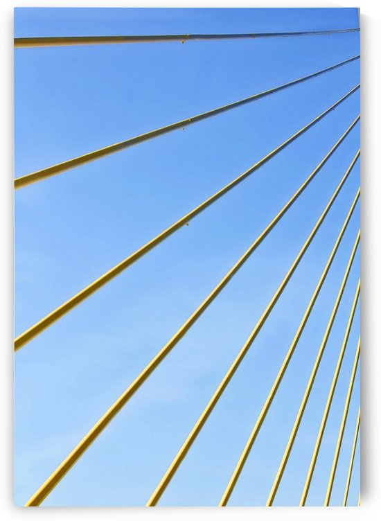 Golden Cables by HH Photography of Florida