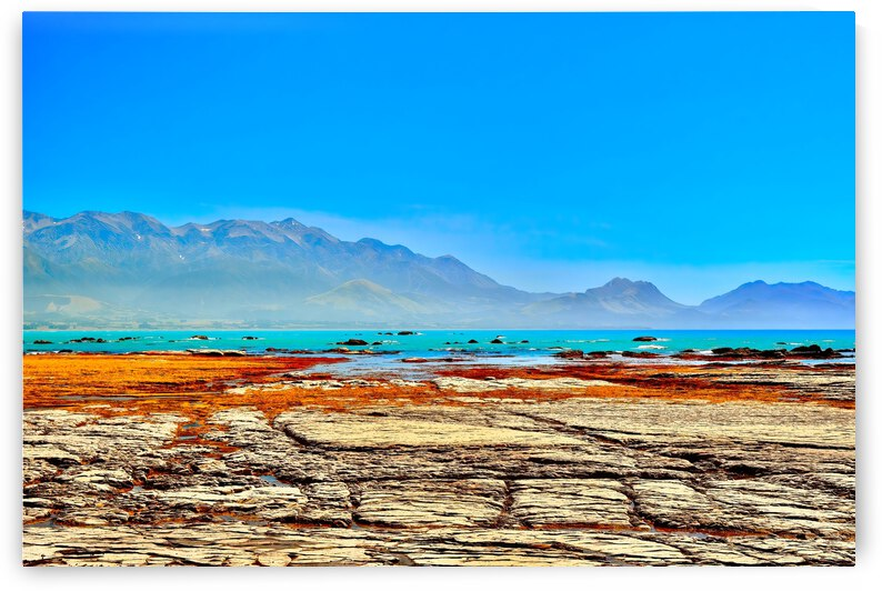 Limestone Platform ... Kaikoura New Zealand by Fred J Bivetto