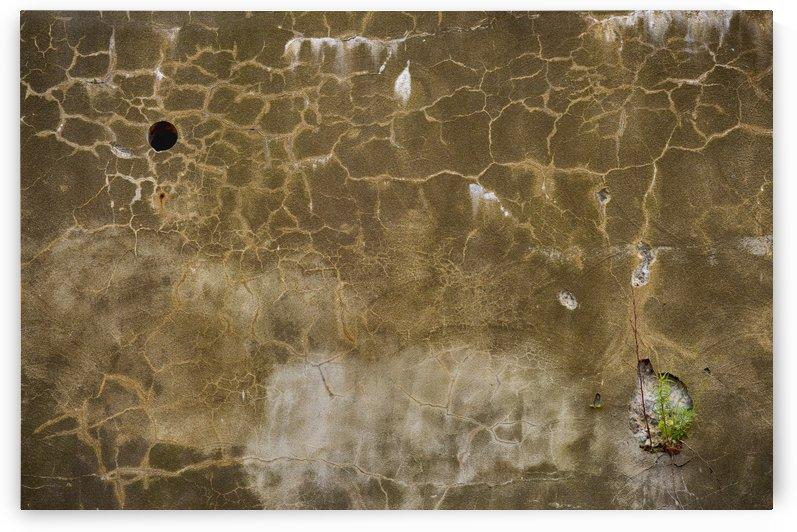 Muraille by Christian Bibeau