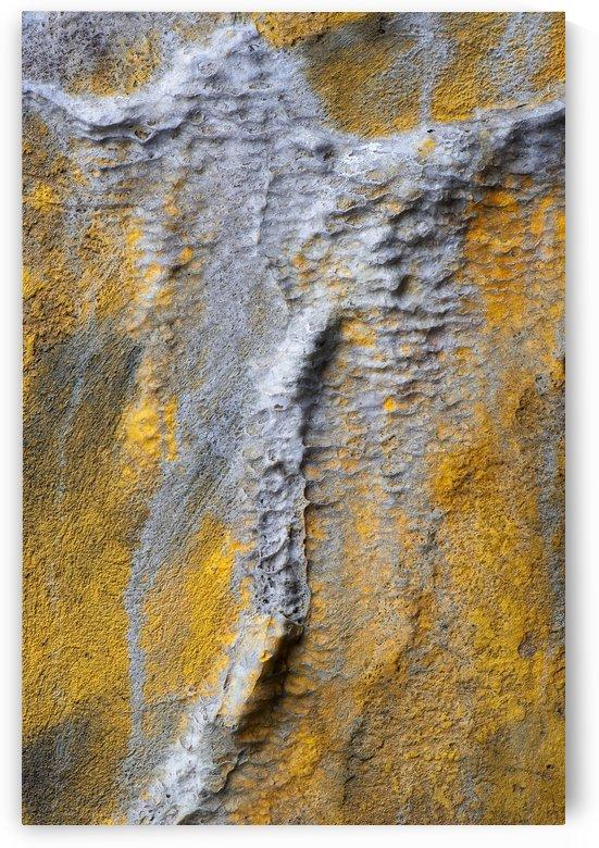 Fantomatic by Christian Bibeau