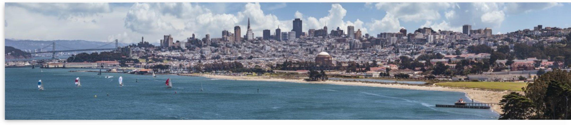 San Francisco Skyline  by Melanie Viola