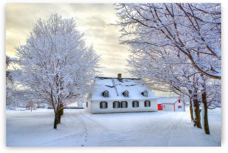 Maison de Noel by Christian Bibeau