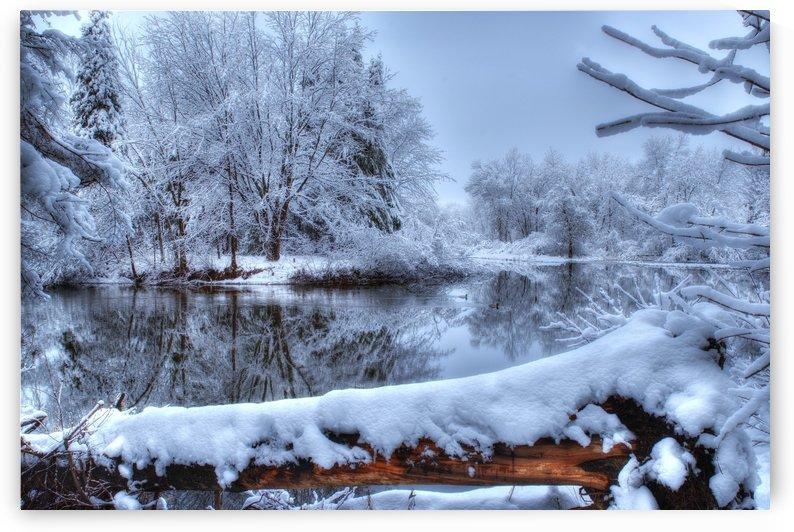 Feerie de l hiver by Christian Bibeau