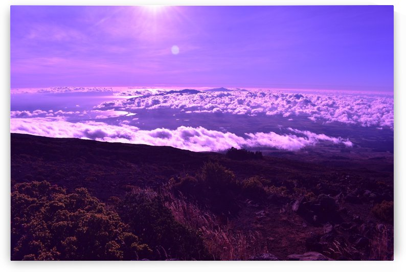 Purple highlands by Zzyzx