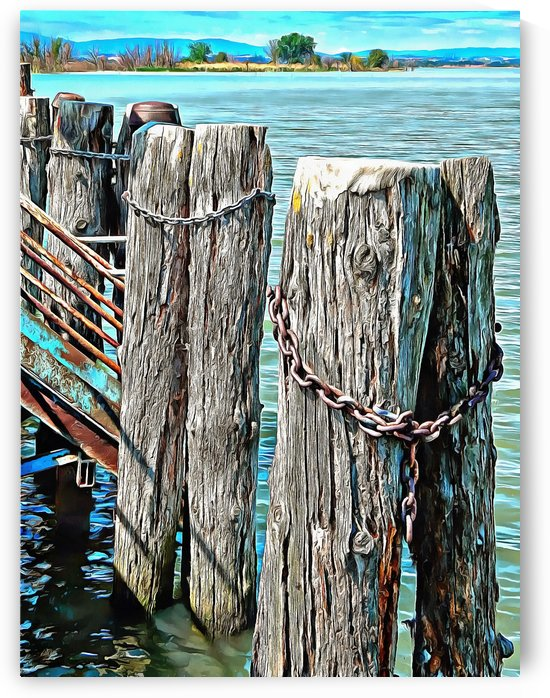 Boat Dock Pilings at Sant Arcangelo Umbria by Dorothy Berry-Lound
