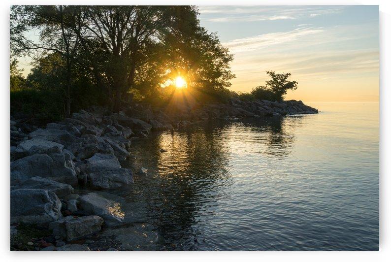 Cool Heat - Golden Summertime Sunburst on Lake Ontario in Toronto by GeorgiaM