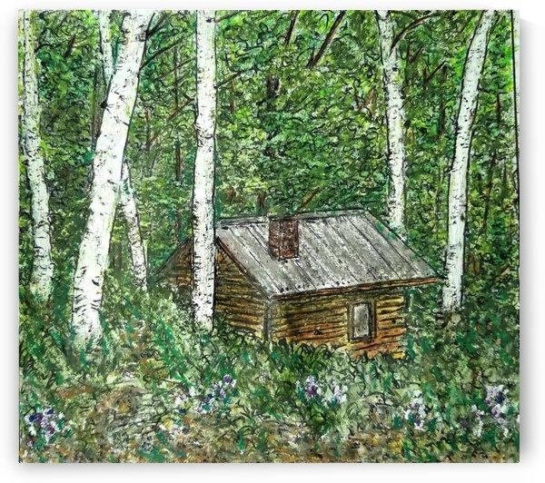 Cabin in The Woods by djjf