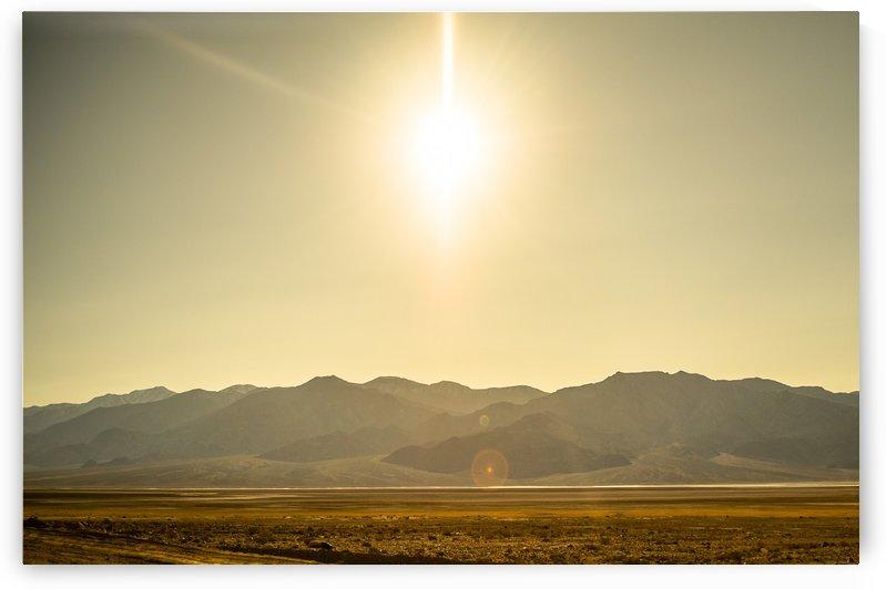 Desert Sun  by Johnnyphotofreak
