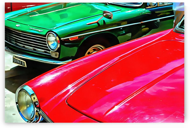 Innocenti C and Fiat 1500 Bonnets by Dorothy Berry-Lound