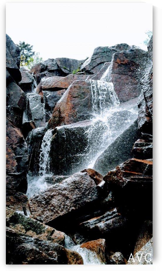 Zealand Falls NH by Angelina V Coronado