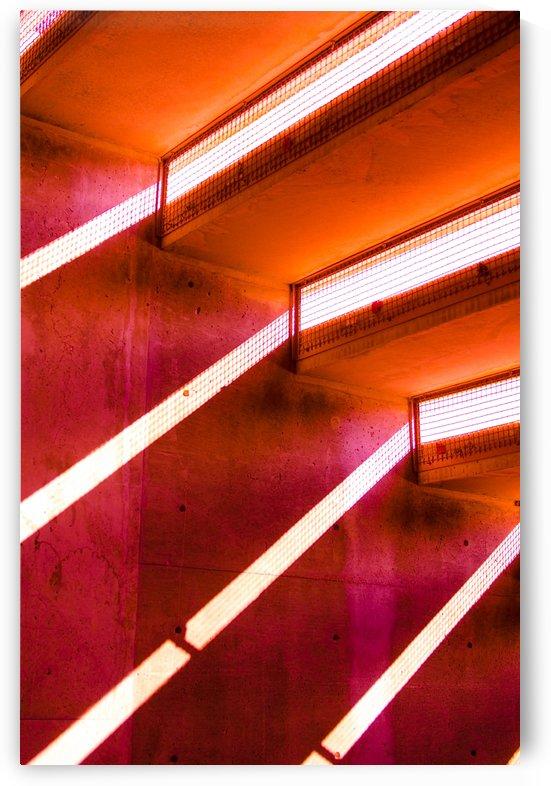 Light Bending by David Pinter