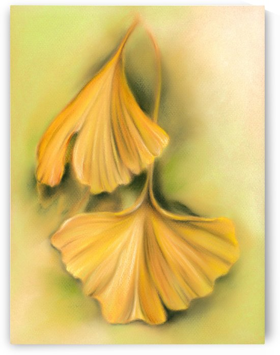 Ginkgo Autumn Leaves of Golden Yellow by MM Anderson