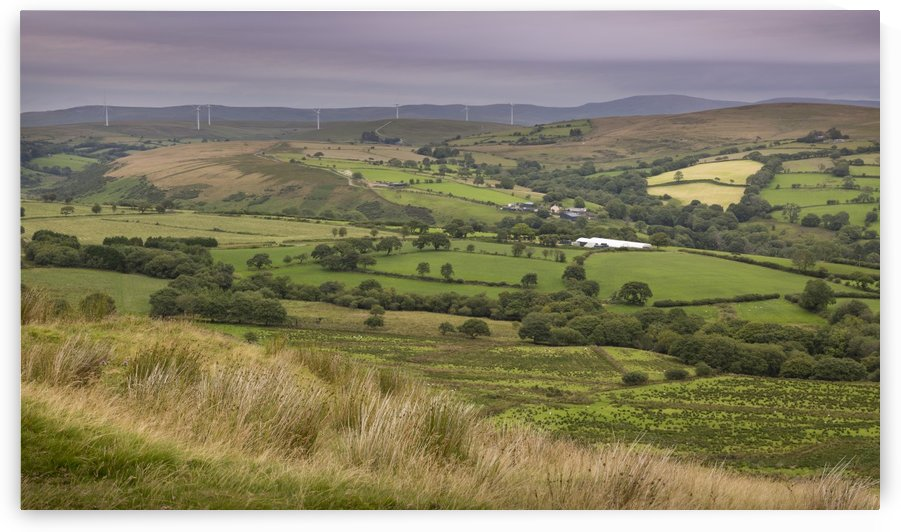 Wind turbines on the Betws Mountain by Leighton Collins