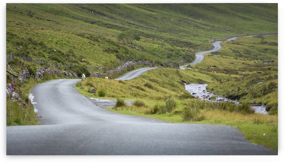 Winding Welsh mountain road by Leighton Collins