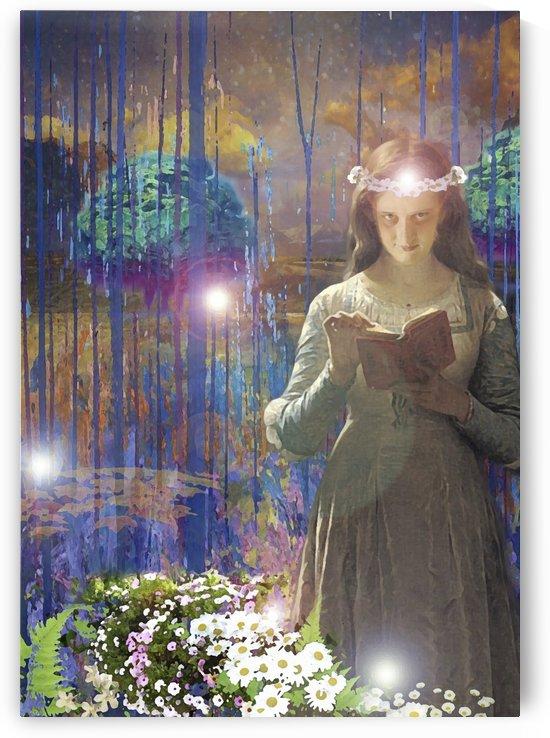 A fairyt ale 11 by Artstudio Merin