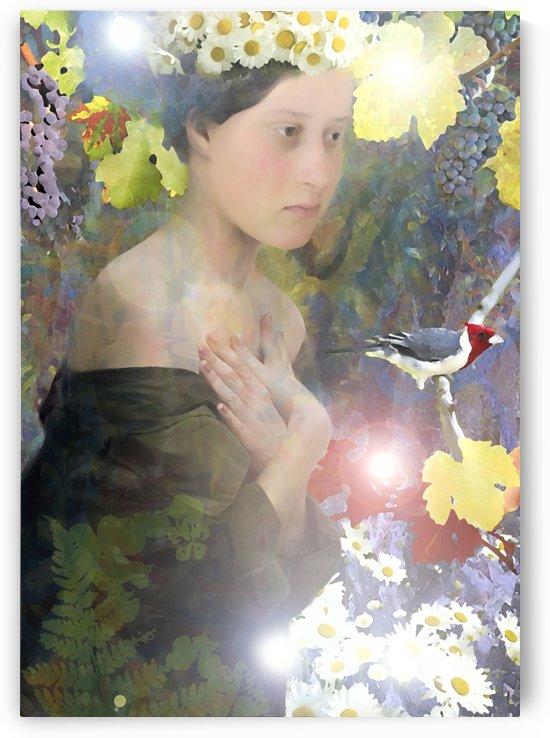 A fairy tale 14 by Artstudio Merin