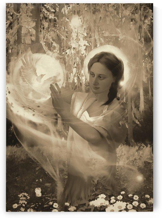 fairy tale 3EE by Artstudio Merin