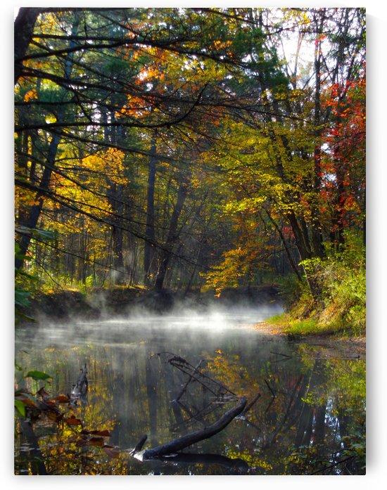 Misty River by Holly Heath