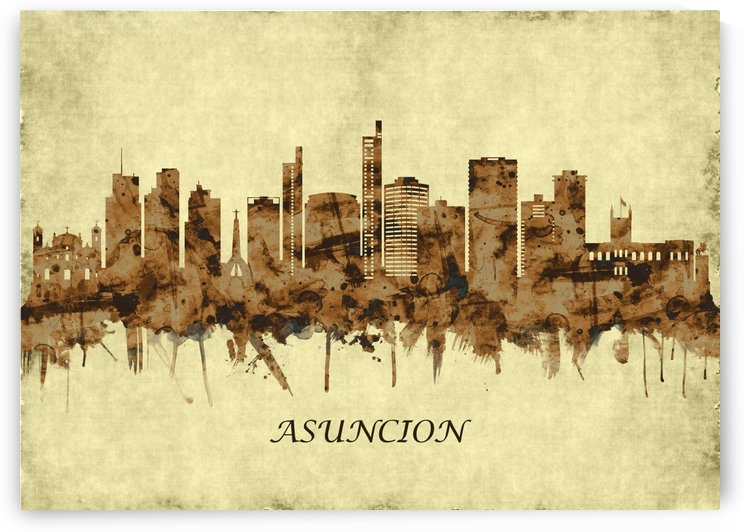 Asuncion Paraguay Cityscape by Towseef Dar