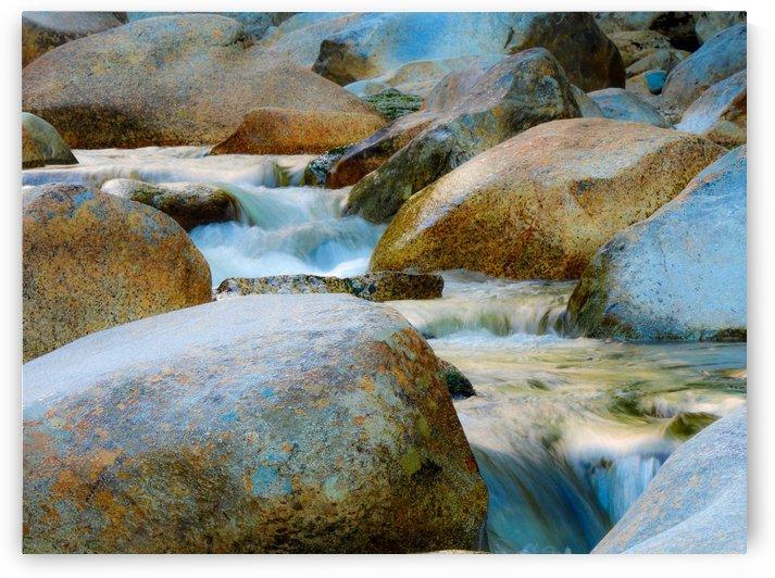Still Waters by Holly Heath