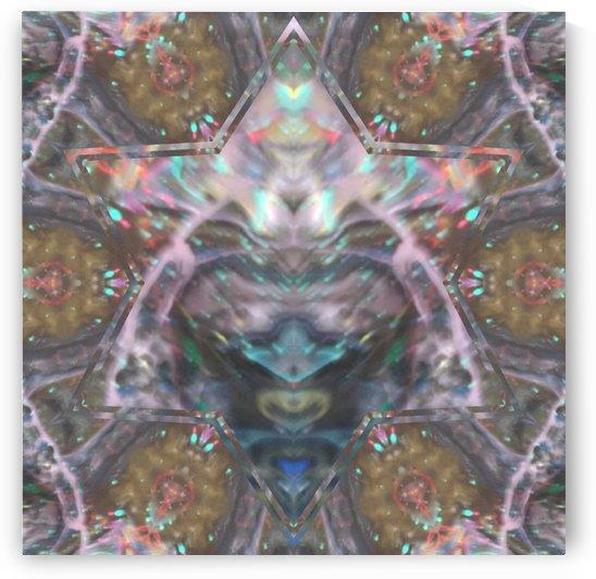 image3A24945_mirror by gary jessep
