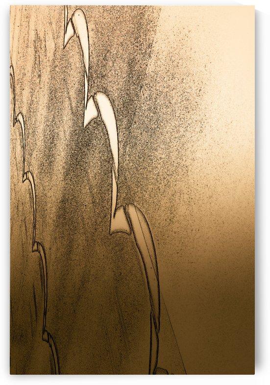 Metal Collection 6 by David Pinter