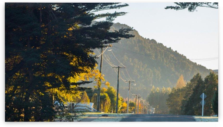 Morning Street by Nick Goll