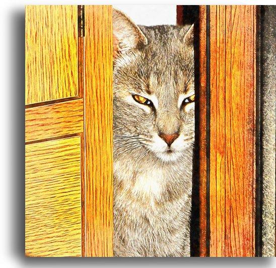 Looking From The Other Side by Dorothy Berry-Lound