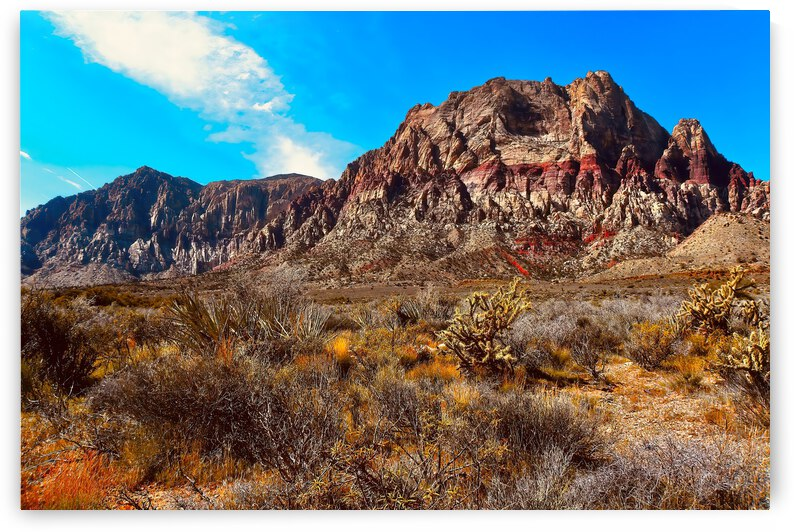 Red Rock Canyon ... Clark County Nevada by Fred J Bivetto