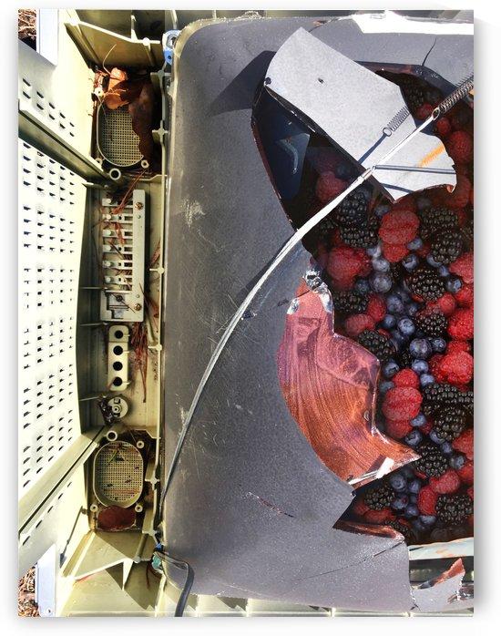 Berries  by Miels El Nucleus
