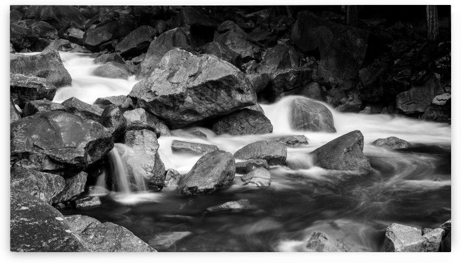 Rapids by Zach Sine